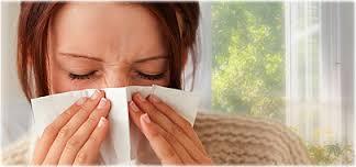 Allergy'